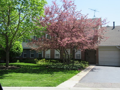 Wheeling Condo/Townhouse New: 1512 Canbury Court #D2