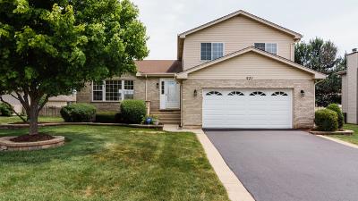 Romeoville Single Family Home New: 631 Mendota Lane