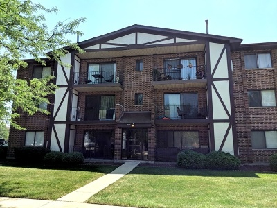 Tinley Park Condo/Townhouse New: 7131 166th Street #302