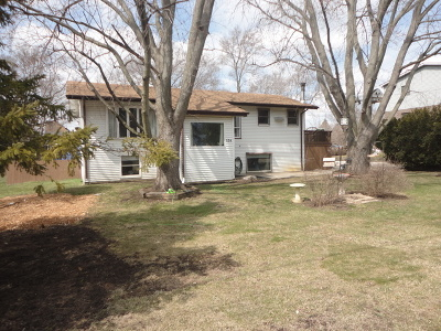 Antioch Single Family Home For Sale: 574 Drom Court