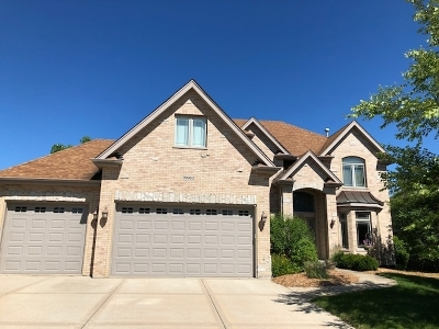 Mokena Single Family Home For Sale: 19963 Red Oak Drive