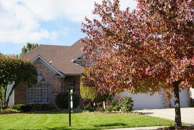 Naperville IL Single Family Home New: $650,000