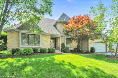 Naperville Single Family Home For Sale: 1767 Frost Lane