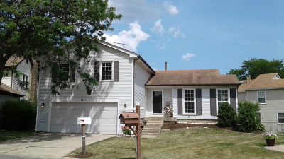 Buffalo Grove Single Family Home For Sale: 1421 Chase Court