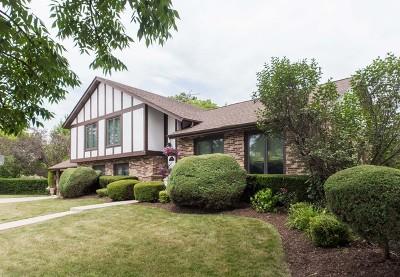 Mount Prospect Single Family Home For Sale: 2000 East Pin Oak Drive