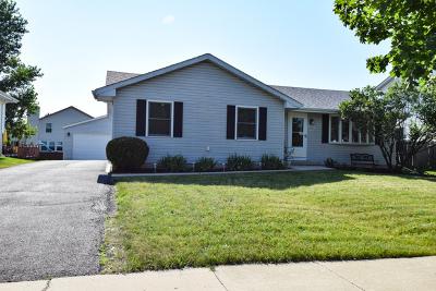 Plainfield Single Family Home New: 2505 Joe Adler Drive