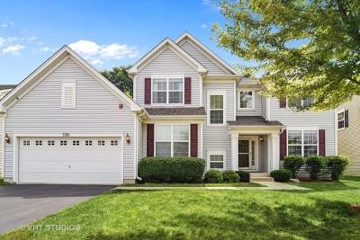 Hoffman Estates Single Family Home New: 2261 Edgartown Lane