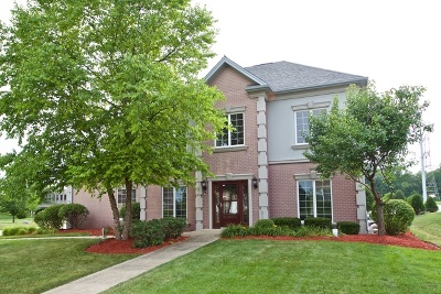 Bolingbrook Single Family Home For Sale: 1 Keller Court