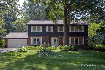 Elgin Single Family Home New: 38w703 Brindlewood Lane