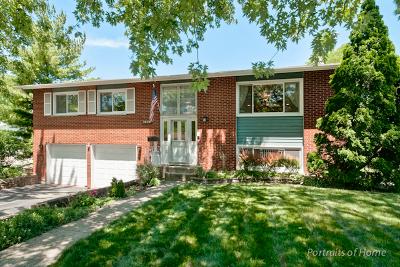 Woodridge Single Family Home For Sale: 2536 Jackson Drive