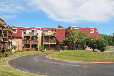 Aurora Condo/Townhouse New: 1855 Tall Oaks Drive #2302