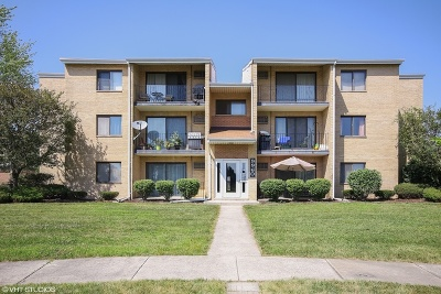 Orland Park Condo/Townhouse For Sale: 9960 Franchesca Court #1B