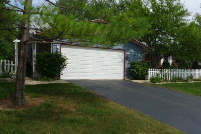 Hoffman Estates Single Family Home New: 3935 Lexington Drive