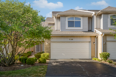 Schaumburg Condo/Townhouse New: 1028 Angela Court #1028
