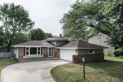 Naperville Single Family Home New: 6s176 Country Drive