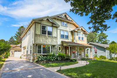 Wheaton Single Family Home For Sale: 828 Lyford Lane South