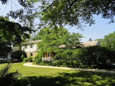 Barrington Single Family Home For Sale: 738 South Forest Drive