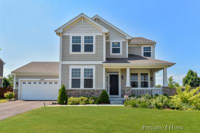 Elgin Single Family Home New: 206 Prescott Avenue