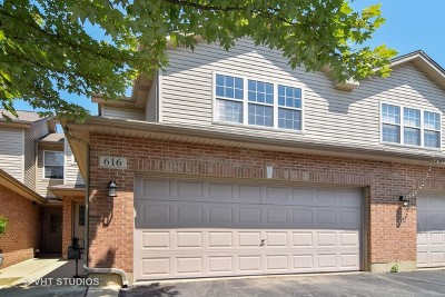 Roselle Condo/Townhouse For Sale: 616 Daisy Lane