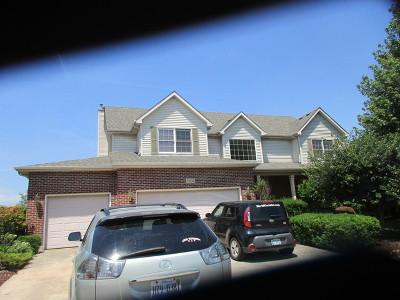 Plainfield Single Family Home New: 24134 Simo Drive