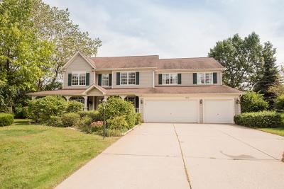 Fox Lake Single Family Home New: 997 Reserve Court
