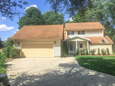 Willowbrook Single Family Home For Sale: 10s310 Jamie Lane