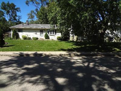 Carpentersville Single Family Home For Sale: 738 Jackson Avenue