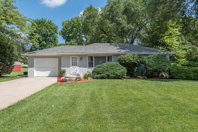Naperville Single Family Home New: 25w058 Lacey Avenue