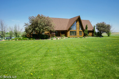 Du Page County, Kane County, Kendall County, Will County Single Family Home New: 11842 West Offner Road