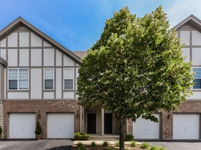 Lake Zurich Condo/Townhouse New: 240 Rosehall Drive #260