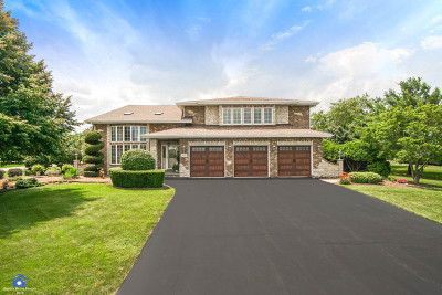 Homer Glen Single Family Home New: 16132 South Windmill Drive