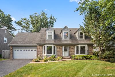 Glen Ellyn Single Family Home New: 553 Wilson Avenue