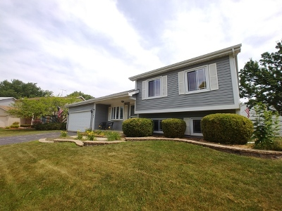 Bartlett IL Single Family Home For Sale: $264,500