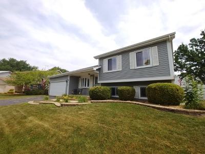 Bartlett IL Single Family Home New: $264,500