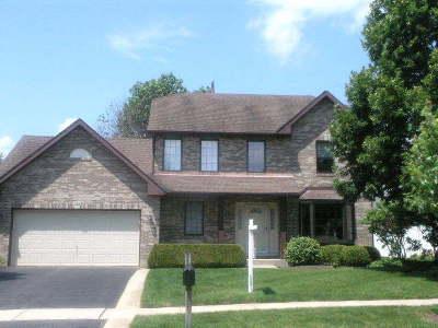 Palatine Single Family Home New: 114 North Crescent Avenue