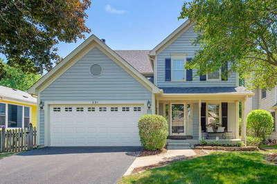 Wheaton Single Family Home New: 231 Bates Street