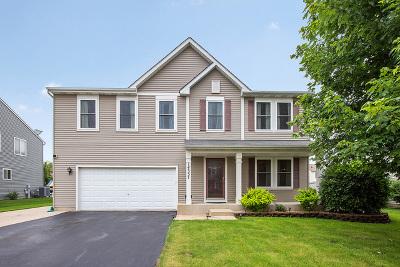 Plainfield Single Family Home New: 14337 Capital Drive
