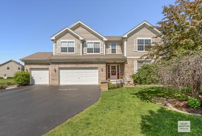 Plainfield Single Family Home New: 16342 Fairfield Drive