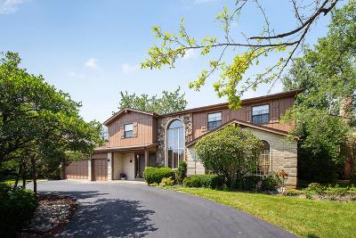 Northbrook Single Family Home New: 3916 Snowbird Lane