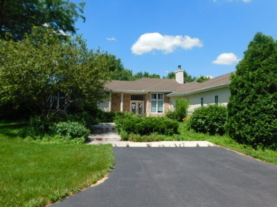 Kane County Single Family Home For Sale: 2s036 Grove Hill Drive