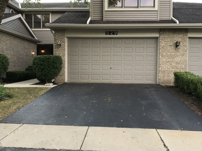 Palatine Condo/Townhouse New: 529 North Walden Drive