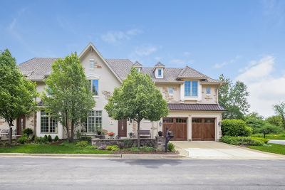 Oak Brook Condo/Townhouse New: 41 Willow Crest Drive #41