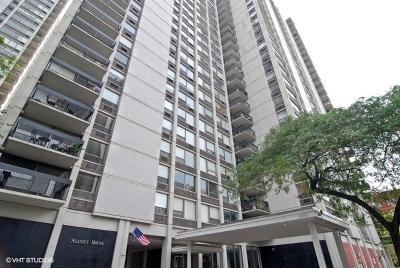 Chicago IL Condo/Townhouse New: $385,000