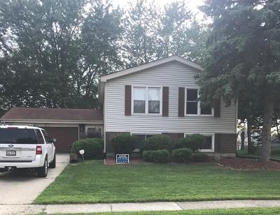 Frankfort Single Family Home New: 20716 South Oak Lane