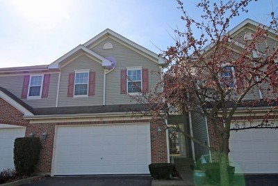Streamwood Condo/Townhouse New: 25 Haverton Court