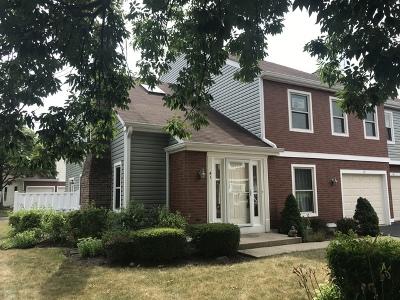 Palatine Condo/Townhouse New: 41 South Stonington Drive #191
