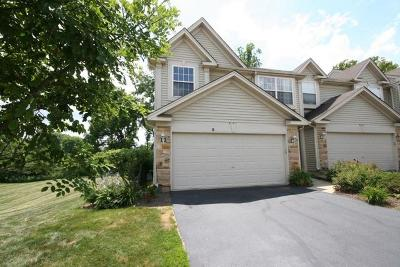 Carpentersville Condo/Townhouse For Sale: 8101 Sierra Woods Lane #8101