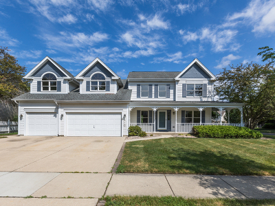 Carol Stream Single Family Home For Sale: 872 New Britton Road