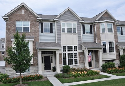 Naperville Condo/Townhouse New: 2881 Henley Lane