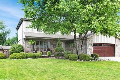 Lockport Single Family Home For Sale: 809 Lisdowney Drive